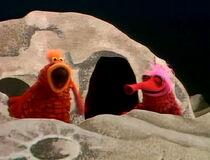 Muppet sex