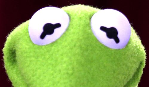 Kermit-Eyes.jpg