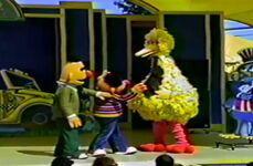 Big bird and company 8
