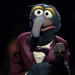 Gonzo-TheVoice-2012.jpg
