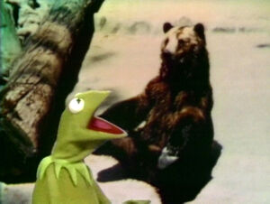 Kermit'sBearExc.jpg
