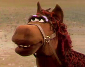 Fred the Wonder Horse headshot.jpg