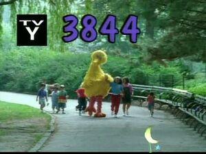 3844.jpg
