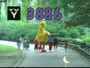 3886.jpg