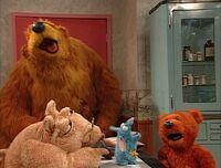 Bear316i
