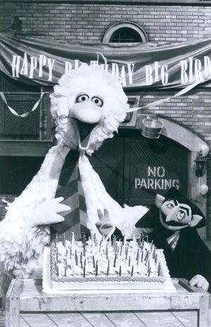 Big bird's birthday 1.jpg