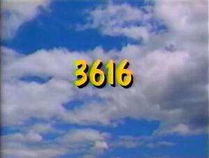 3616.jpg