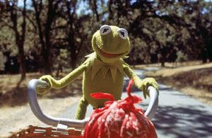 Kermit bicycle pov.jpg