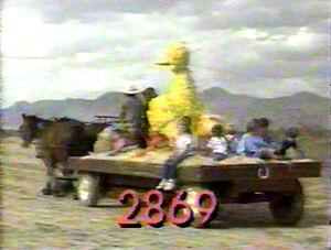 2869.jpg