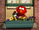 Elmo's World: Flowers, Plants & Trees