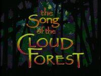 Title.cloudforest