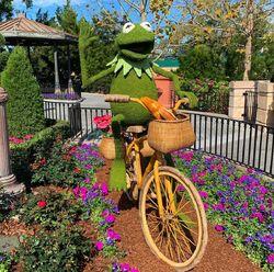 Epcot Flower & Garden Fest-2019 - Kermit -01