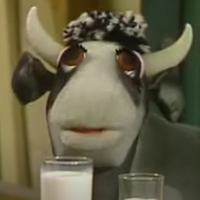 2565-Cow