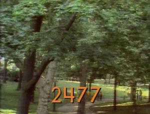 2477.jpg