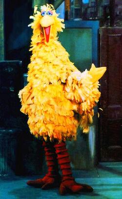 Bigbird1969.jpg
