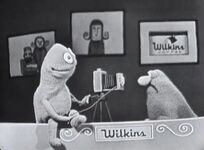 Wilkins-Camera