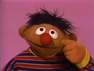 Ernie.nose.jpg