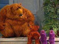 Bear314f