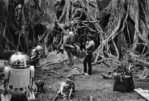 Frank Oz Yoda Dagobah set