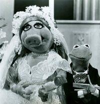 TMS Wedding01