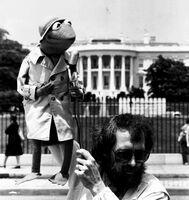 HereComeThePuppets!-ReporterKermit-And-JimHenson-(1980)