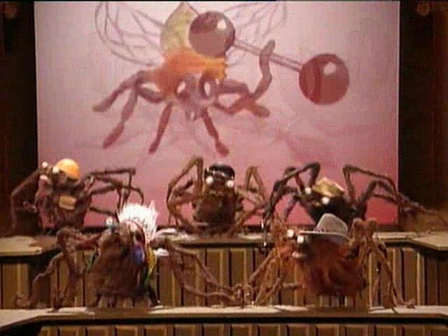 The Village Spiders