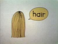 Hairtoon