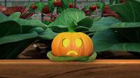 324 Oh My Gourd 24