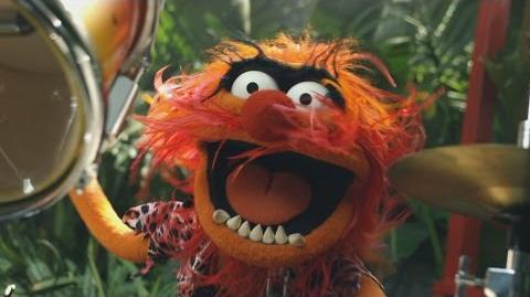 Jungle Boogie Muppets Music Video The Muppets