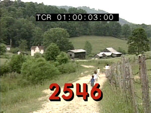 2546.jpg