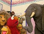 Elmo's World: Wild Animals