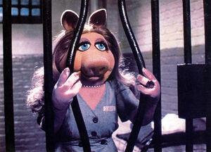 Piggyinprison.jpg