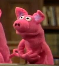 2646-Pig1