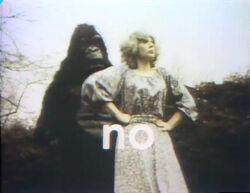 Gorilla-no.jpg
