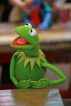 Kermit3.jpg