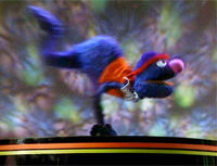 Grover.dancer.jpg