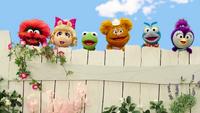 MuppetBabiesPlayDate-BabiesBehindTheFence