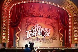 Telethon sign