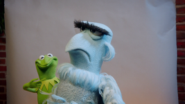 MuppetsNow-S01E01-Photobomber-Merp
