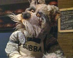 Bubba-dogcity.jpg