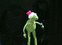 Kermit's50thAnniversaryTour-RockettesOpeningNightReader-(2005-11-04)