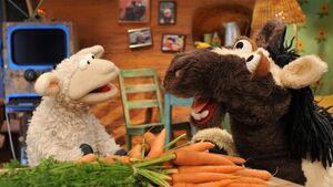 EineMöhreFürZwei-CarrotDuo.jpg