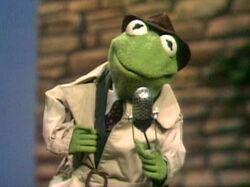Kermit Reporter.jpg