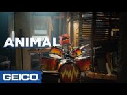 There's An Animal In The Attic - GEICO Insurance