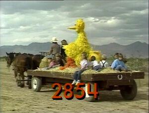 2854.jpg