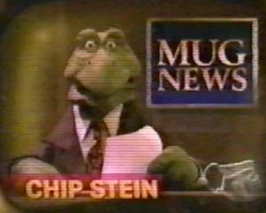 Chip Stein