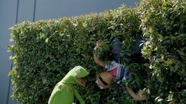 MuppetsNow-S01E01-Hedge