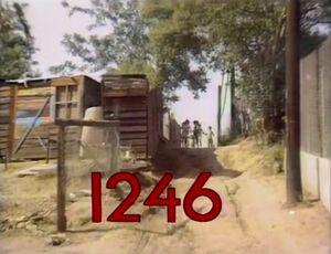 1246.jpg