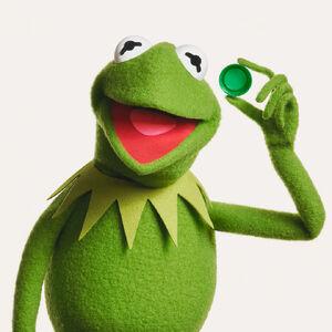 Kermit Adidas Promo 1.jpg