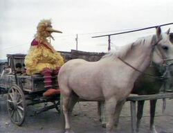 Cowboybird.jpg